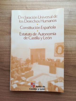 Derechos humanos. Constitución Española....