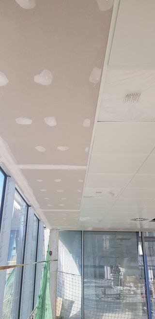 pladur y falsos techo