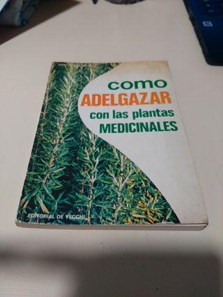 COMO ADELGAZAR CON LAS PLANTAS MEDICINALES.