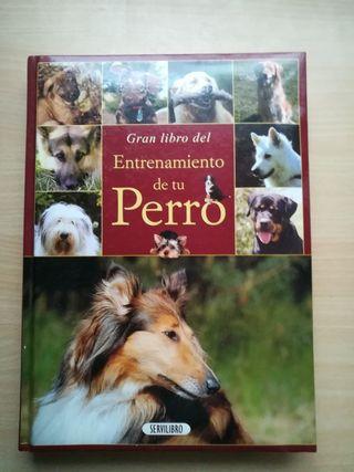libro perros
