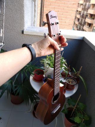 Ukelele tamaño concierto Ibanez Opn10