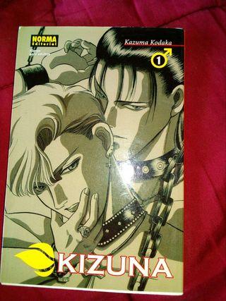 Cómic Manga Kizuna