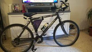 bicicleta Orbea antigua