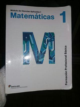 Libro De matemáticas FPB