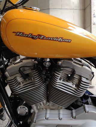 Harley Davidson Sportster 883 Carburación