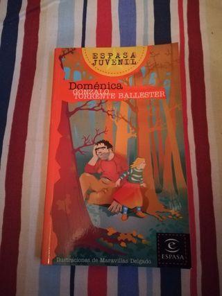 Novela juvenil Doménica