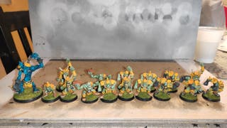 Equipo completo blood bowl orcos