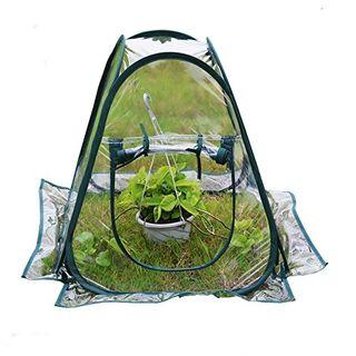 Mini invernadero portátil, transparente, de efecto