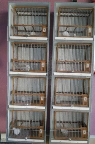 armario estantería para jaulas C1 C2