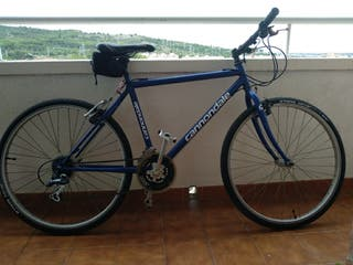 Bicicleta urbana talla xs