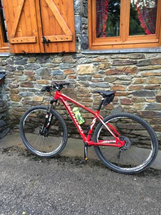 Bici Specialized