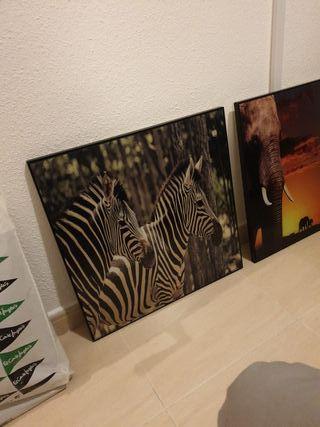 juego de cuadro cebra y elefante