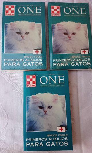 primeros auxilios para gatos mascota animal