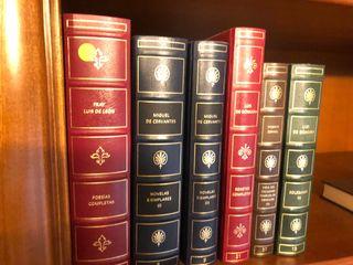 Libros clásicos muebles salón