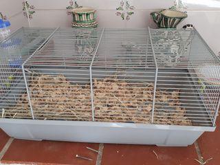 jaula hamster,cobaya