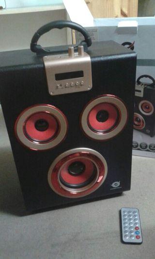 Wireless Party Speaker