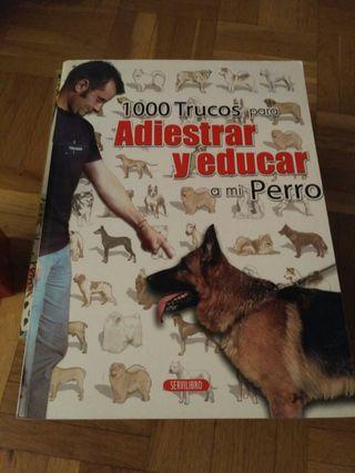 libro adiestramiento y educación perro