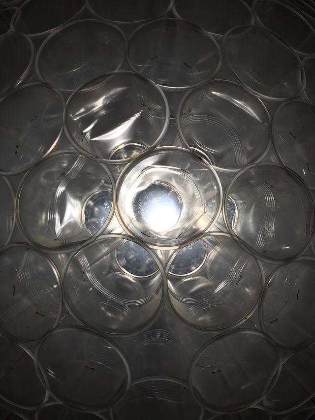Lámpara vasos plástico