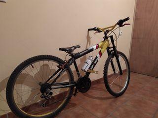 Bicicleta de descenso semirrigida