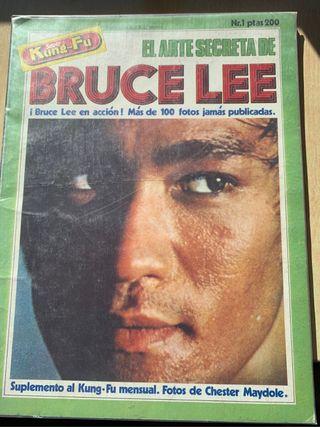Colección revistas Bruce Lee