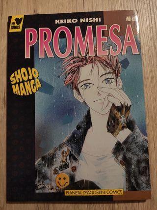 Manga romántico Promesa