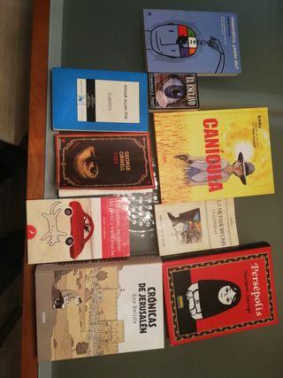 Libros y novelas gráficas de gran reconocimiento