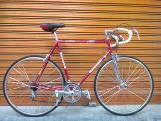 bicicleta razesa