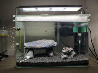 Pecera Blau aquascaping 40L + Accesorios