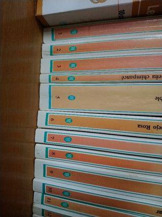 Biblioteca juvenil Salvat Alfaguara.