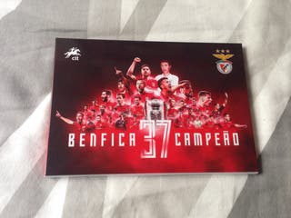 BENFICA 37 CAMPEONATOS LIGA SELLOS PORTUGAL