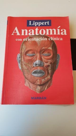 libro de anatomía lippert