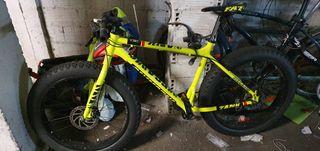 bicicleta megamo fat