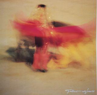 Lámina fotografía torero difuminado colorido toro