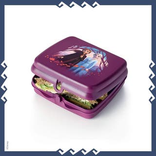 SET FROZEN TUPPERWARE