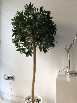 Árbol Laurel Artificial