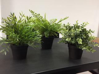 Mini plantas artificiales x 3