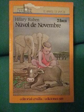 libro nuvol de novembre ( juvenil ) aventuras