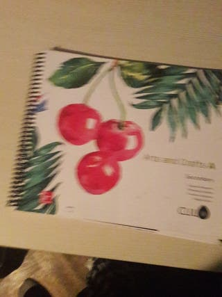 libro arts and craft secondary