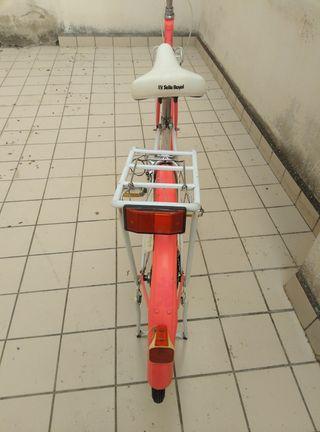 bicicleta holandesa de señora