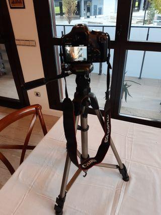 Camara Canon 500D perfecta con accesorios