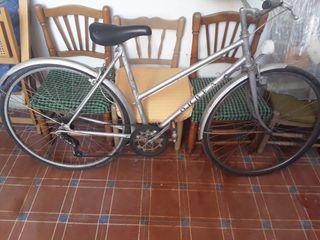 bici orbea antigua