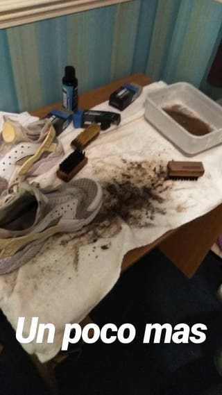 Sneakers or Shoes cleaner
