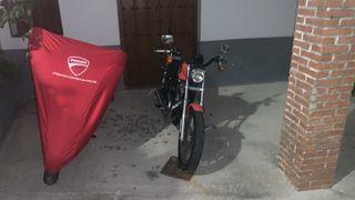 Vendo Harley davidson XLR 883 sporter seminueva