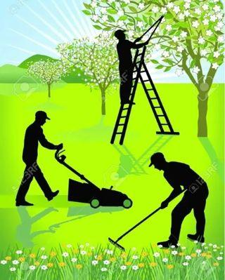 se busca persona para trabajar de jardinero