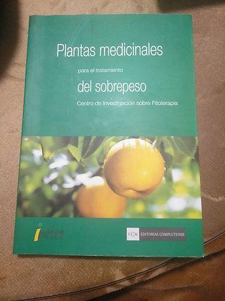 Plantas medicinales sobrepeso