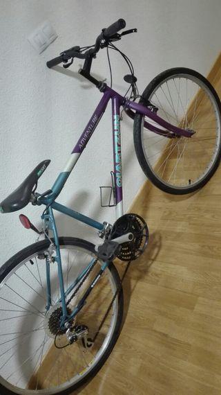 bicicleta adulto 26''varios colores