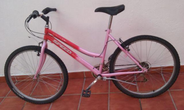 Bicicleta chica