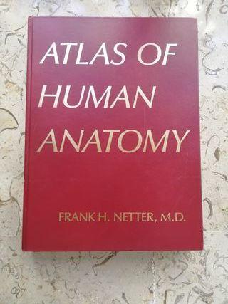Atlas de anatomía humana (Netter)