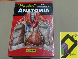Atlas comentado de Anatomía 'Master'