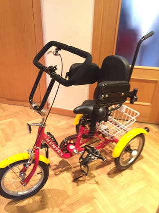 Bicicleta triciclo adaptado infantil discapacidad